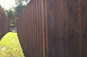 Armadillo Fence Staining